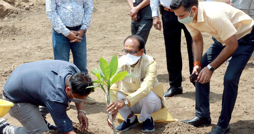 Chief Minister Shri Chauhan planted plant of Champa