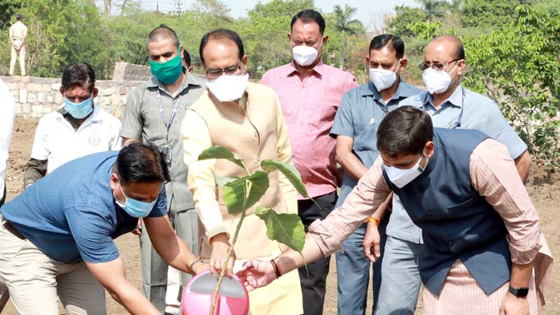 Chief Minister Shri Chouhan planted a Peepal plant