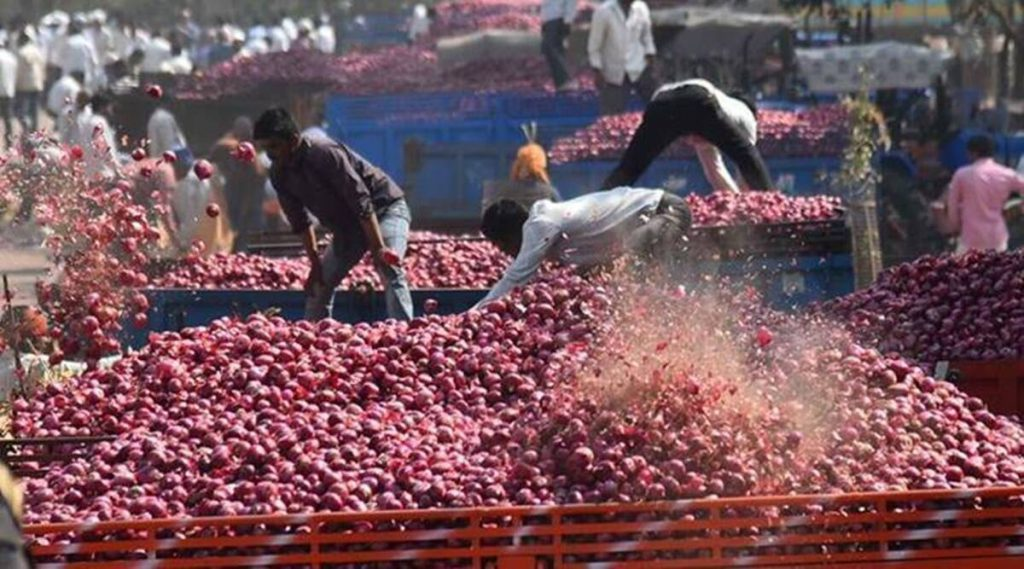 onion prices, onion prices india, india onion prices, onion export india