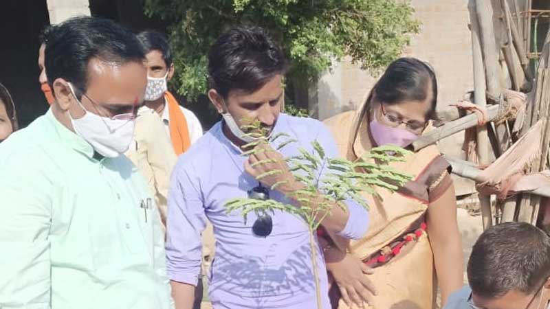 Minister of State Shri Yadav planted saplings on BJP's foundation day